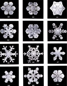 Snowflakes by Wilson Bently