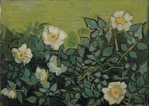 Wild Roses Vincent van Gogh, 1890